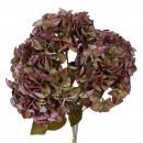 Buisson Hortensia, 5 capitules, L45cm, vert vieux